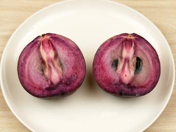 a-4903  星苹果为山榄科热带常绿果树,原产中南美洲,果实横切面